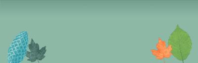 404_Desktop
