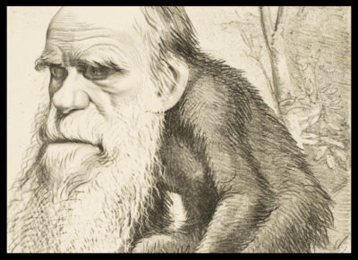 Darwin-You-darwin-session-darwin-caricature