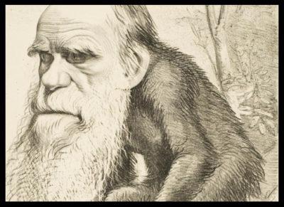 Darwin-You-darwin-session-darwin-caricature
