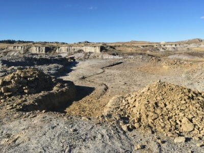 Tom-T.Rex-Dig-Site-A
