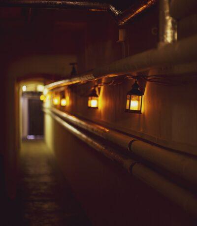 TMOP_060619_Wollaton-Hall-underground_6_small-e1633098951219